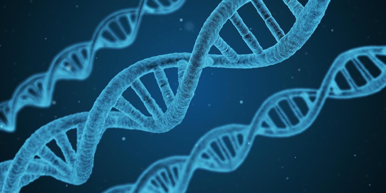 ADN - Laboratoire Naturoscience