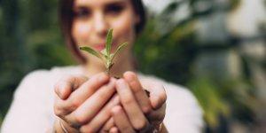 Les plantes de puissantes alliées pour notre santé - Laboratoire-Naturoscience.fr