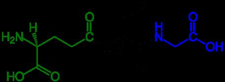Glutathion - Détox