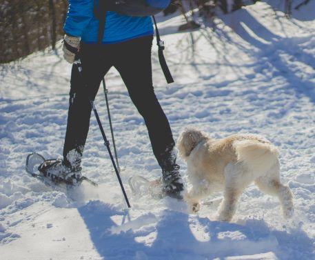 randonnée hiver forme