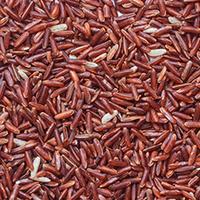riz rouge - Laboratoire-Naturoscience.fr
